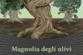 Magnolia degli ulivi